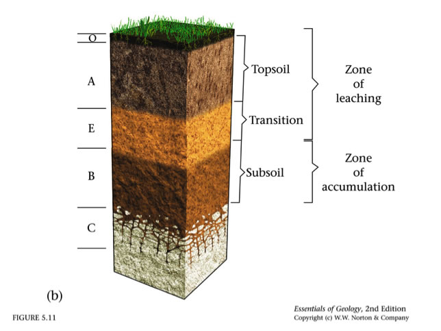 Weathering soils for Soil horizons layers
